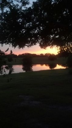 My Backyard  Texas Sunset 2013