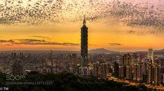 Taipei city http://ift.tt/1PwaAJe architecturebuildingcitycityscapecloudslightnightrepublic of chinaskysunsettaipeitaipei 101taipei citytaiwantravelurban