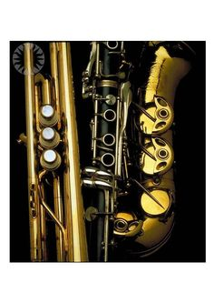 Image detail for -Photo brass and woodwind instruments - img 7198.