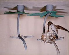 Hummingbird House -- A perfect place for a female hummingbird to nest and raise her young. 2 for $30