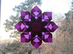 Purple Star by Pictures by Ann, via Flickr