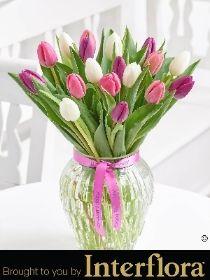 Happy Birthday Pink Elegance Tulip Vase
