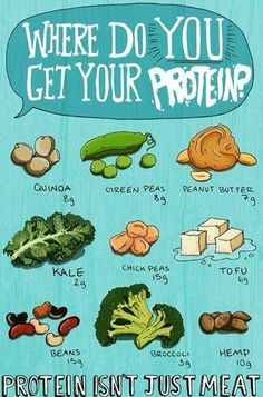Where do you get your protein. Protein isn't just meat.