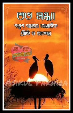 Hd Good Afternoon Wallpaper 15 Popular শুভ সন্ধ্যা Images Bible Quotes Bible