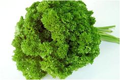 Health Benefits of Parsley for Babies include remedy for digestive disorders, good for eyesight, good for the immune system and cure for urinary tract infections.