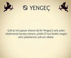 Yengeç Horoscope, Nom Nom, Cancer, Funny, Halloween, Zodiac Cancer, Truths, Funny Parenting, Horoscopes