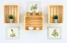 Skrzynki drewniane cena: 45zł/sztuka