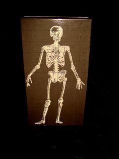 Skeleton Box Matches