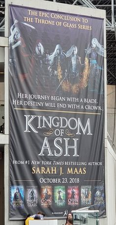 I am so excited omg. I'm pretty sure I'll be Aelin or someone for Halloween (since the book comes out a few days before) Throne Of Glass Books, Throne Of Glass Series, A Court Of Wings And Ruin, A Court Of Mist And Fury, Assassin, Book Expo, Aelin Ashryver Galathynius, Crown Of Midnight, Empire Of Storms