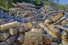 Radiata Pine (pinus radiata) off-cuts and rejects in the log yard of the Caboolture saw mill, owned and operated by CHH Wood Products in Queensland, Australia. For image licensing enquiries, please feel welcome to contact me at derekwalker73@bigpond.com  Cheers :)