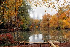 Fall Colors in Central Park, New York City. Buy fine art canvas prints, framed prints, acrylic or metal prints of New York City photos by Nishanth Gopinathan. Perfect as wall decor for your home or office.