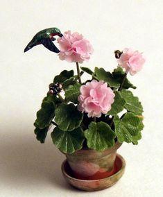 hummingbirdpage