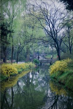 Suzhou Gardens, Suzhou, 2012