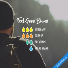 Feel Good Blend - Essential Oil Diffuser Blend