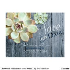 Driftwood Succulent Cactus Wedding Save the Date Postcard Lovely succulent plants + faux wood grain in shades of bluish gray designed on custom Wedding Save the Date Postcards. Unique botanical themed stationery you can fully customize for your RUSTIC COUNTRY WEDDING   MODERN BOTANICAL WEDDING or CASUAL OUTDOOR WEDDING! Feel free to change the typefaces, colors & sizes of the text as well. (