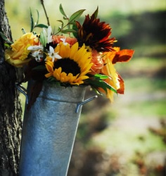 Sunflower bouquet in a bucket