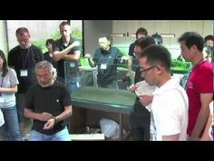 http://www.acuaristica.com/blog/2012/03/otras-tecnicas-de-plantado/