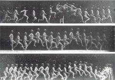 Chronophotographs by Etienne-Jules Marey.