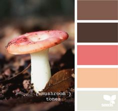 Mushroom Tones. Browns, salmon, apricot, and grey with green undertones