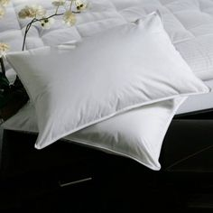 Shop for White Plush-top Medium-Density Goose Feather Pillows (Set of Get free delivery On EVERYTHING* Overstock - Your Online Bedding Basics Store! Get in rewards with Club O! Goose Feather Pillows, Goose Down Pillows, Best Pillow, Pillow Set, Pillow Covers, Queen Size, King Size, Choice Hotels, Goose Feathers