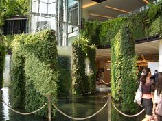 the living wall - Google Search