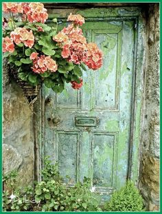 Antiqued Door & Geraniums