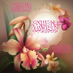 Good Morning Arabic, Good Morning Wishes, Allah Wallpaper, Islamic Pictures, Alhamdulillah, Islamic Quotes, Beautiful Flowers, Girl Outfits, Neon Signs