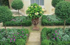 A French style 'parterre'