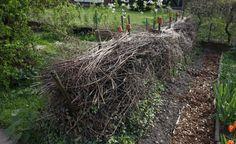Eine Benjeshecke, auch Totholzhecke genannt,passt sehr gut in einen Naturgarten
