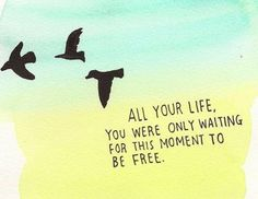 Take these broken wings and learn to fly | via Tumblr