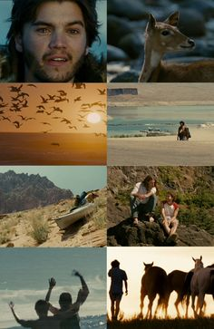 I swear this film is always on my mind. Into the Wild.