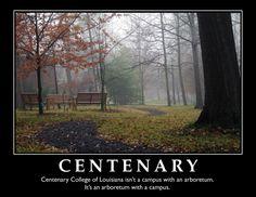 Great quote from Centenary College of Louisiana student Lauren Marlar.