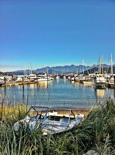 #Gibsons Marina harbour - an environment that fosters creativity...