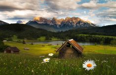 Germany, Bavaria, Geroldsee ... Perfect landscape photography...   wild HDR blend of exposures, pano stiches and focus stacking. Anyways, shot with a 650D and Tamron 17-50mm f2.8 at a ISO range between 100-400, shutterspeed between something like 1/10 to fast 1/100 for the flowers in the foreground, which fluttered pretty fast in the wind.