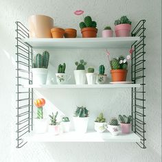 Rekje! Decor Interior Design, Interior Styling, Interior Decorating, Room With Plants, Succulents In Containers, Flower Stands, Cactus Y Suculentas, Green Life, Decoration