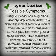 Abounding in Hope: A Quick Look at Lyme Disease
