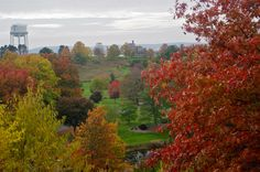 F.R. Newman Arboretum overlook view, Cornell Plantations. Photo by Joe Wilensky