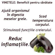 "VINETELE - ""Merele Dragostei"" - beneficii surprinzatoare pentru sanatate Eggplant, Sprouts, Vegetables, Food, Plant, Essen, Eggplants, Vegetable Recipes, Meals"