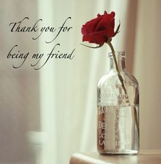 Image from http://www.imagesbuddy.com/images/114/2013/12/thank-you-for-being-my-friend-rose-in-pot-graphic.jpg.