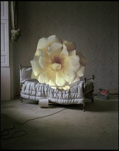 'Giant Yellow Flower Rose on Miniature Bed'- Linder Sterling Collage, Eglingham Hall, Northumberland, UK. Photo by Tim Walker. Victoria And Albert Museum, Amazing Photography, Fashion Photography, Tim Walker Photography, Miles Aldridge, Interiors Magazine, Foto Art, Through The Looking Glass, British Style