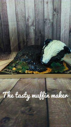 Bertie the sleeping baby badger cake