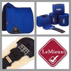 #Present  #LeMieux #Dressage #Pad #Horse  @memelc4