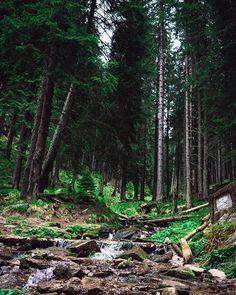 Small waterfall near Gaujoara glade in the Cindrel Mountains. #carpatians #mountainscape #mountains #mountainview #travelblogger #nikonphotography #hike #hiking #hikevibes #explore #travel #travelmore #trip #adventure #travelphotography #romania #romaniapitoreasca #romaniaascunsa #romaniafrumoasa #outdors #landscape #view #mountainphotography #landscapephotography #wild #neverstopexploring #instaphoto #instadaily #instablog