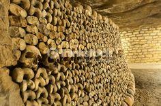 Stock Photo : Paris Catacombs Skulls and bones