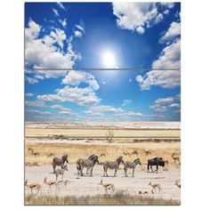DesignArt 'Wandering Zebras under Bright Sky' 3 Piece Photographic Print on Wrapped Canvas Set