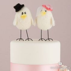 'Sweet Tweets' Bride and Groom