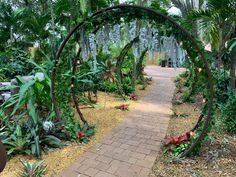 Wedding Ceremony, Sidewalk, Sculpture, Plants, Beautiful, Walkways, Sculpting, Plant, Pavement