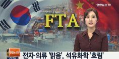 한중 FTA, 20일 공식 발효한다