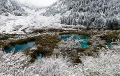 Beautiful winter wonderland in Jiuzhaigou Valley . Photo taken on April 2013 shows the scenery of snow covered trees by a lake in Jiuzhaigou Valley, southwest Chinas Sichuan Province. Visit China, Snow Covered Trees, China Travel, Winter Travel, Winter Wonderland, Landscape Photography, The Good Place, Travel Destinations, Scenery