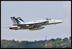 "F-18E Super Hornet VFA-143 ""Pukin Dogs"" 